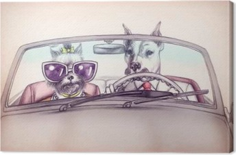 Dogs in car .fashion animals .watercolor illustration Canvas Print