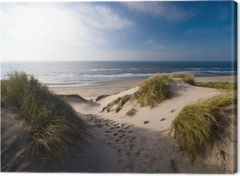 dunes and ocean Canvas Print