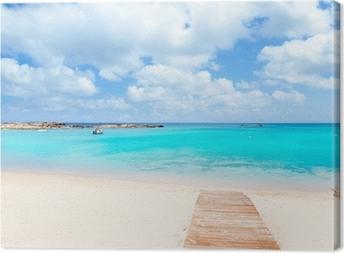 Els Pujols Formentera white sand turquoise beach Canvas Print