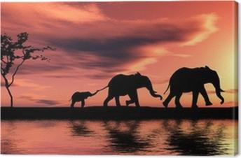 Family of elephants. Canvas Print
