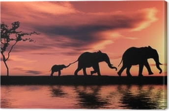 Family of elephants. Canvas Print