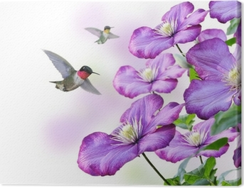 Flowers And Hummingbirds Canvas Print