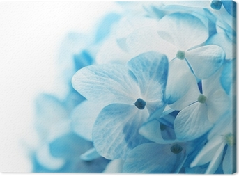 flowers background Canvas Print