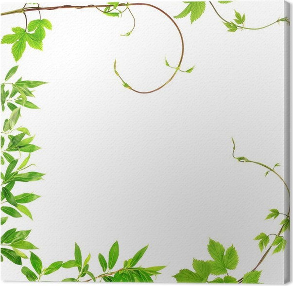 foliage frame Canvas Print • Pixers® • We live to change