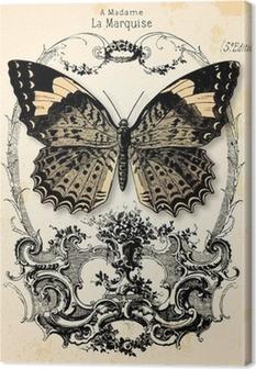 Fond papillon Canvas Print