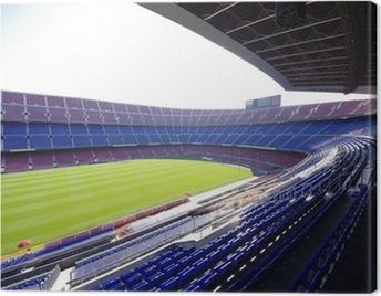 football soccer stadium Canvas Print