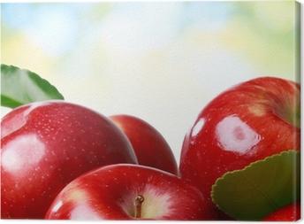 Fresh apples Canvas Print