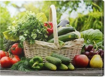 Fresh organic vegetables in wicker basket in the garden Canvas Print