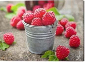 Fresh raspberry Canvas Print