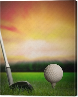 golf ball about to be hit from tee Canvas Print