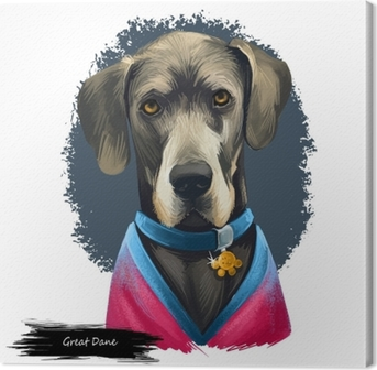 Great Dane, Deutsche Dogge, German Mastiff dog digital art illustration isolated on white background. Germany origin working, guardian dog. Pet hand drawn portrait. Graphic clip art design Canvas Print