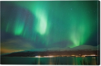Green aurora borealis dancing in the sky Canvas Print