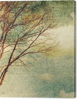 Grunge vintage nature background Canvas Print