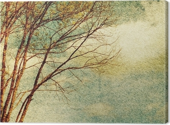 Grunge vintage nature background Canvas Print