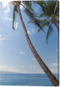 Hawaii - Maui Canvas Print