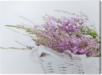 Heather in the basket Canvas Print