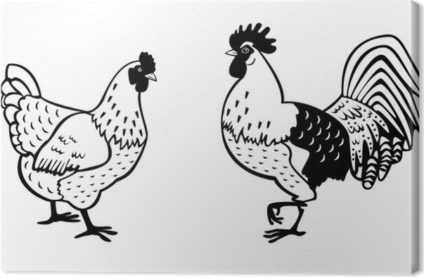 hen and rooster black white canvas print pixers we live to change