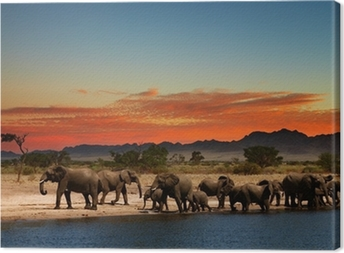 Herd of elephants in african savanna Canvas Print