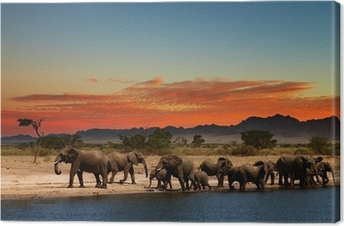 Herd of elephants in african savanna Canvas Print