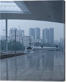 high speed rail station Canvas Print