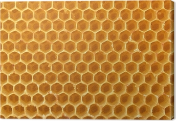 honeycomb background Canvas Print