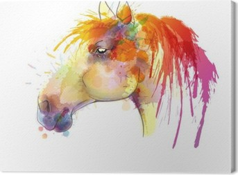 Horse head watercolor painting Canvas Print