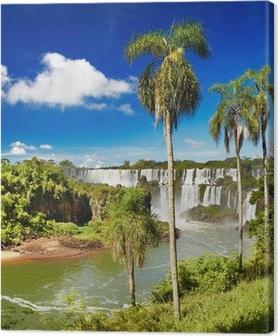 Iguassu Falls, view from Argentinian side Canvas Print
