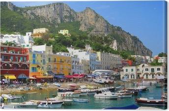 Ile de Capri, Italie, Europe Canvas Print