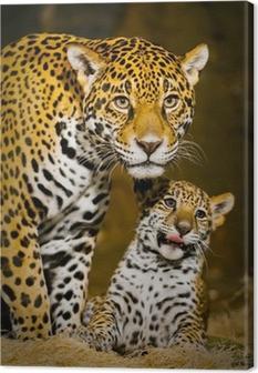 Jaguar Cubs Canvas Print