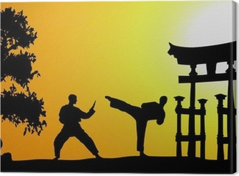 Kampfsport Asien Canvas Print