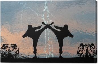 Karatethunder Canvas Print