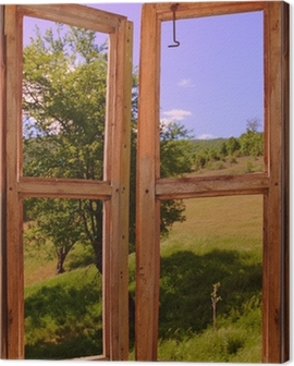landscape seen through a window Canvas Print