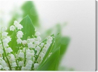 lilly of the valley posy Canvas Print