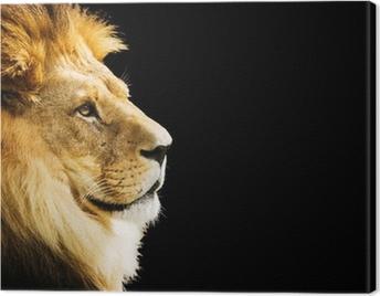 Lion portrait with copy space on black background Canvas Print