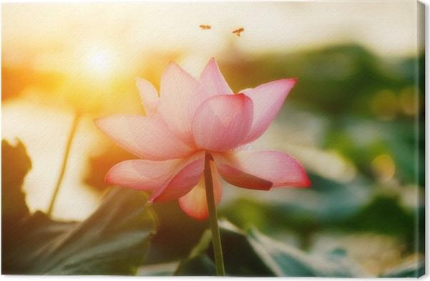 Lotus flower blossom canvas print pixers we live to change lotus flower blossom canvas print flowers mightylinksfo