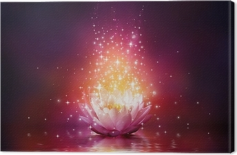 magic flower on water Canvas Print