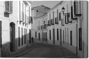 Mancha - Spagna Canvas Print