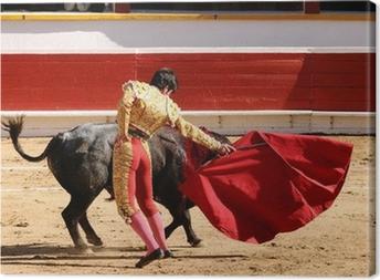 Matador with Cape Canvas Print