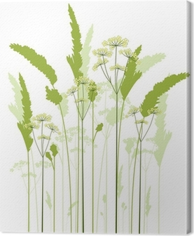 meadow grass Canvas Print