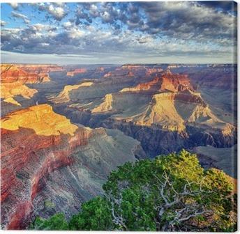 Morning light at the Grand Canyon Canvas Print