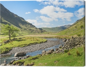 Mountain stream in the Lake District Canvas Print