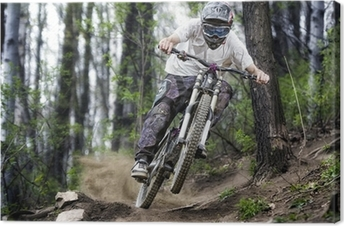 Mountainbiker in the forest Canvas Print