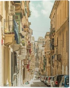 Narrow street in Malta Canvas Print