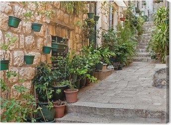 Narrow street with greenery in flower pots on the floor Canvas Print
