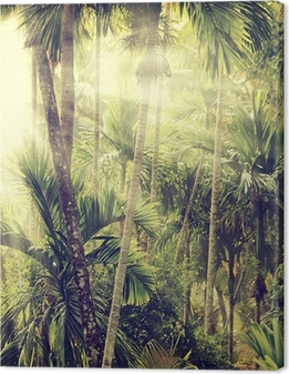 Nature-13 Canvas Print