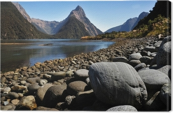 New Zealand Fiordland Canvas Print