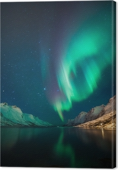 Northern Lights in Norway Canvas Print