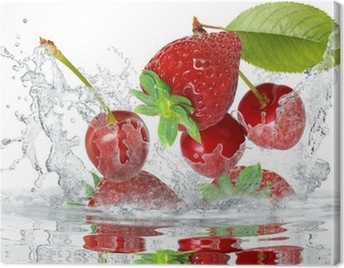 Obst 419 Canvas Print