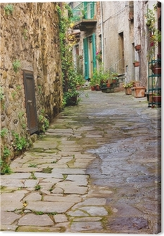 old alley Canvas Print