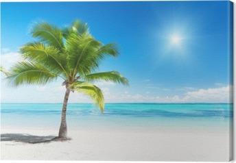 palm and sea Canvas Print